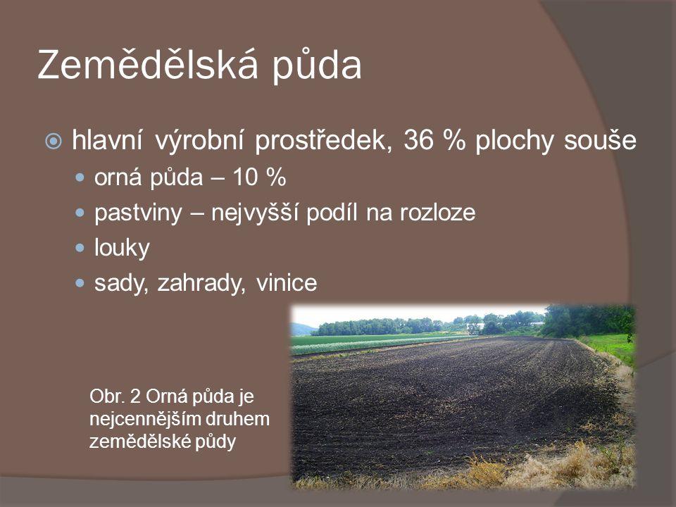 Zemědělská půda  hlavní výrobní prostředek, 36 % plochy souše orná půda – 10 % pastviny – nejvyšší podíl na rozloze louky sady, zahrady, vinice Obr.