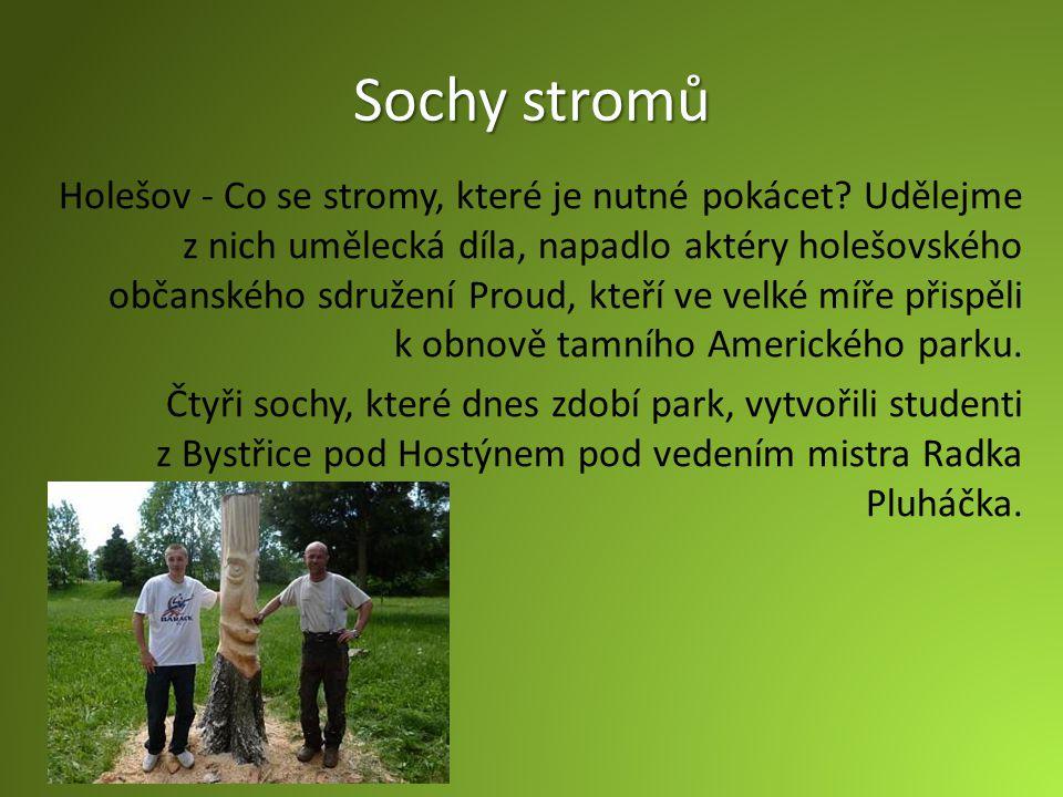 Sochy stromů Holešov - Co se stromy, které je nutné pokácet.
