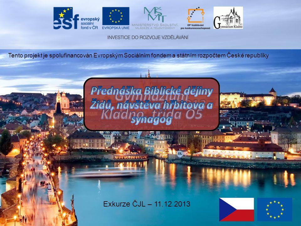 Tento projekt je spolufinancován Evropským Sociálním fondem a státním rozpočtem České republiky Exkurze ČJL – 11.12.2013