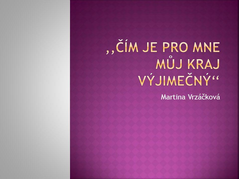 Martina Vrzáčková