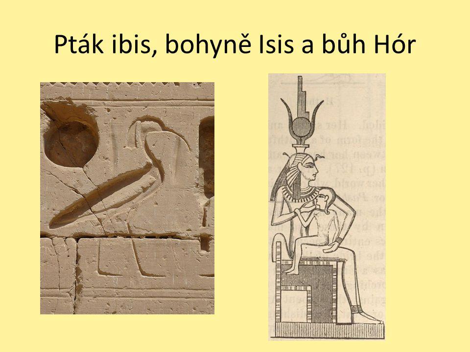 Pták ibis, bohyně Isis a bůh Hór
