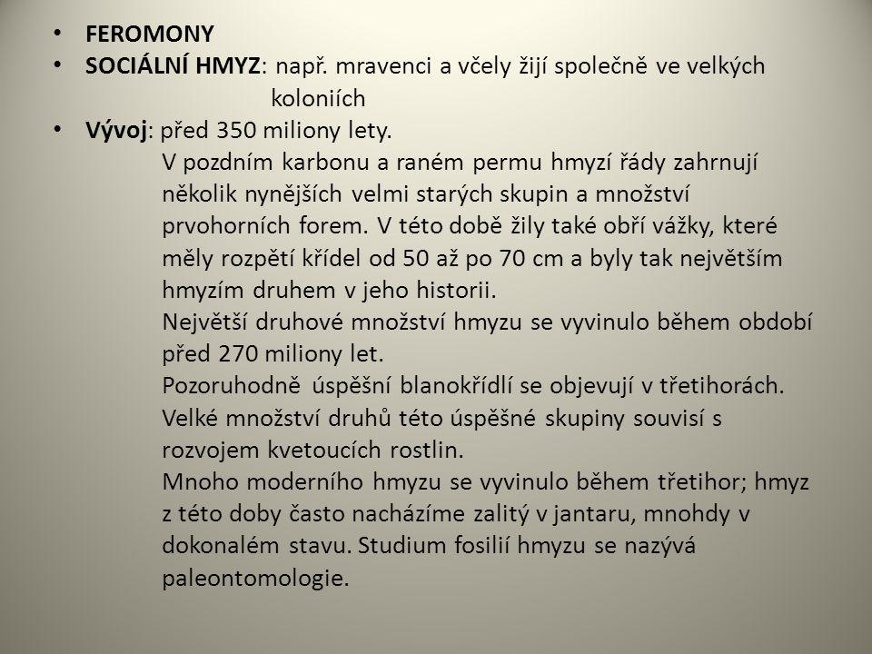FEROMONY SOCIÁLNÍ HMYZ: např.