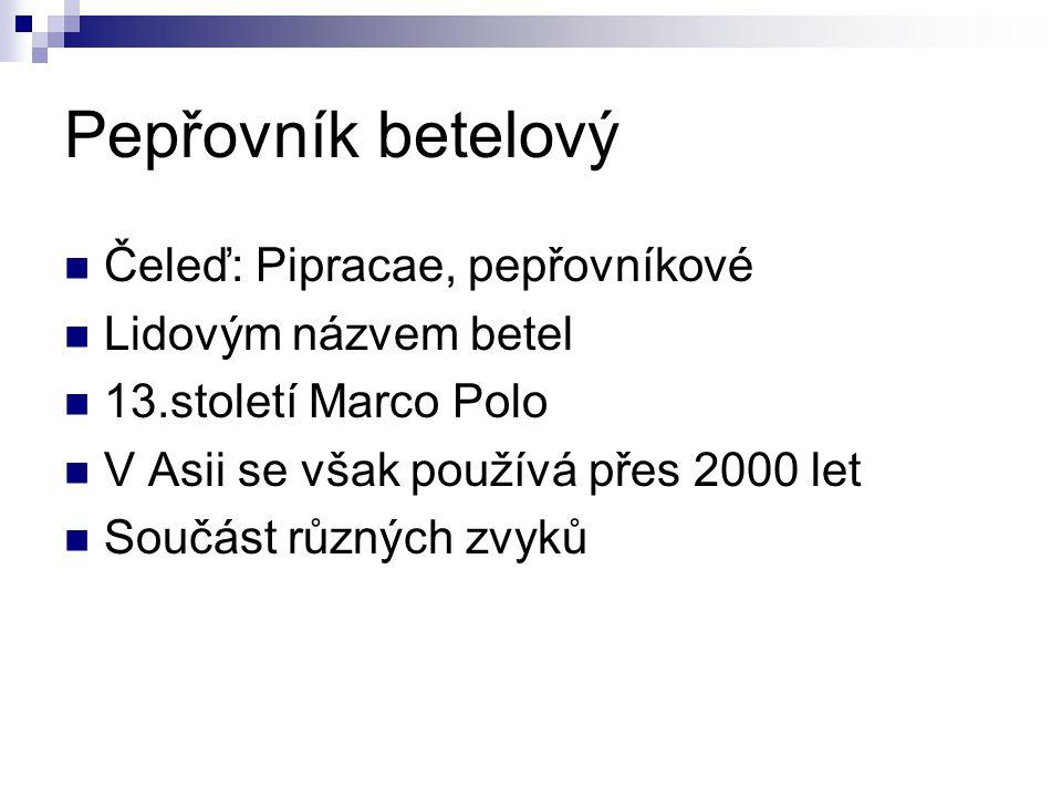 Pepřovník betelový Čeleď: Pipracae, pepřovníkové Lidovým názvem betel 13.století Marco Polo V Asii se však používá přes 2000 let Součást různých zvyků