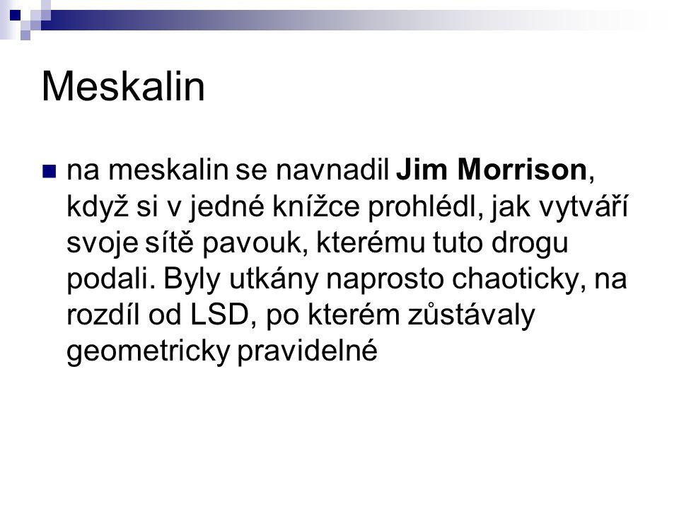 Meskalin na meskalin se navnadil Jim Morrison, když si v jedné knížce prohlédl, jak vytváří svoje sítě pavouk, kterému tuto drogu podali. Byly utkány