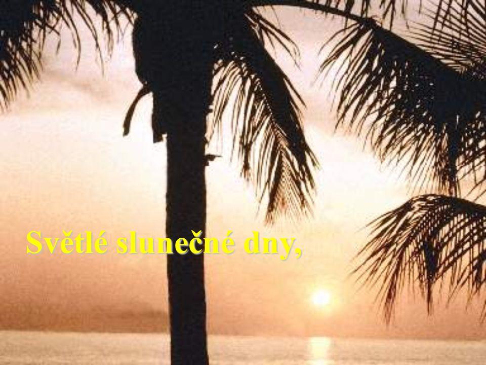 Světlé slunečné dny,