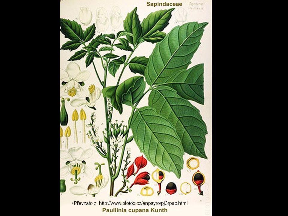 Převzato z: http://www.biotox.cz/enpsyro/pj3rpac.html