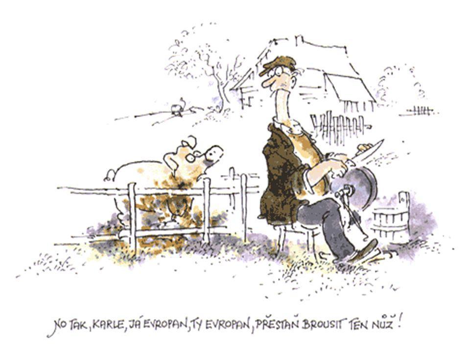 Základní přístupy k HP Rozdílné názory ekonomů na HP Rozdílné názory ekonomů na HP Zásadní rozpory: Zásadní rozpory: Úloha a schopnost státu zasahovat do ekonomiky a ovlivňovat ji Úloha a schopnost státu zasahovat do ekonomiky a ovlivňovat ji Schopnost státu řešit tržní selhání Schopnost státu řešit tržní selhání Nebezpečnost těchto zásahů Nebezpečnost těchto zásahů Dvě základní protikladné teorie: Dvě základní protikladné teorie: Keynesiánská ekonomie Keynesiánská ekonomie Neoklasická ekonomie Neoklasická ekonomie V praktickém uplatnění však dochází k prolínání obou teorií, hledání kompromisů a přizpůsobování současným podmínkám V praktickém uplatnění však dochází k prolínání obou teorií, hledání kompromisů a přizpůsobování současným podmínkám