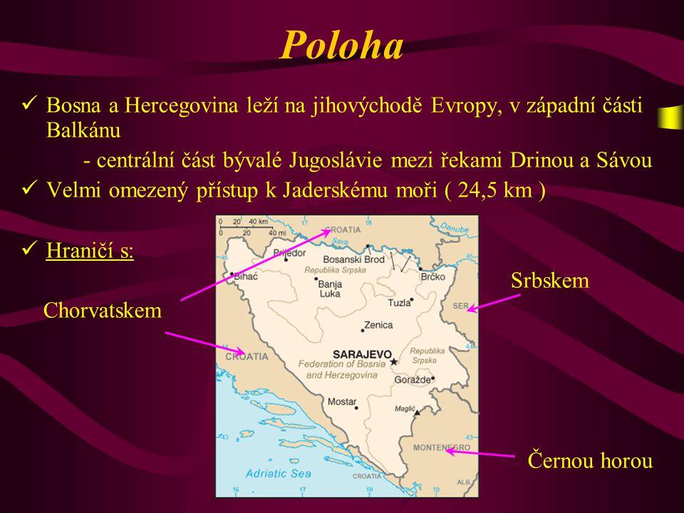 """Přírodní podmínky V elmi hornatý stát ( Dinárské a Bosenské hory ) P odnebí mírné, na severu převážně kontinentální K rátké a prudké řeky, většinou přítoky Sávy: Vrbas, Bosna - do Jadranu ústí řeka Neretva V elké zastoupení lesů ( 50% plochy ) - smíšené a listnaté lesy V ýznamná jsou také """" polje - rozsáhlejší horská údolí, která se objevují při povodí bosenských řek"""