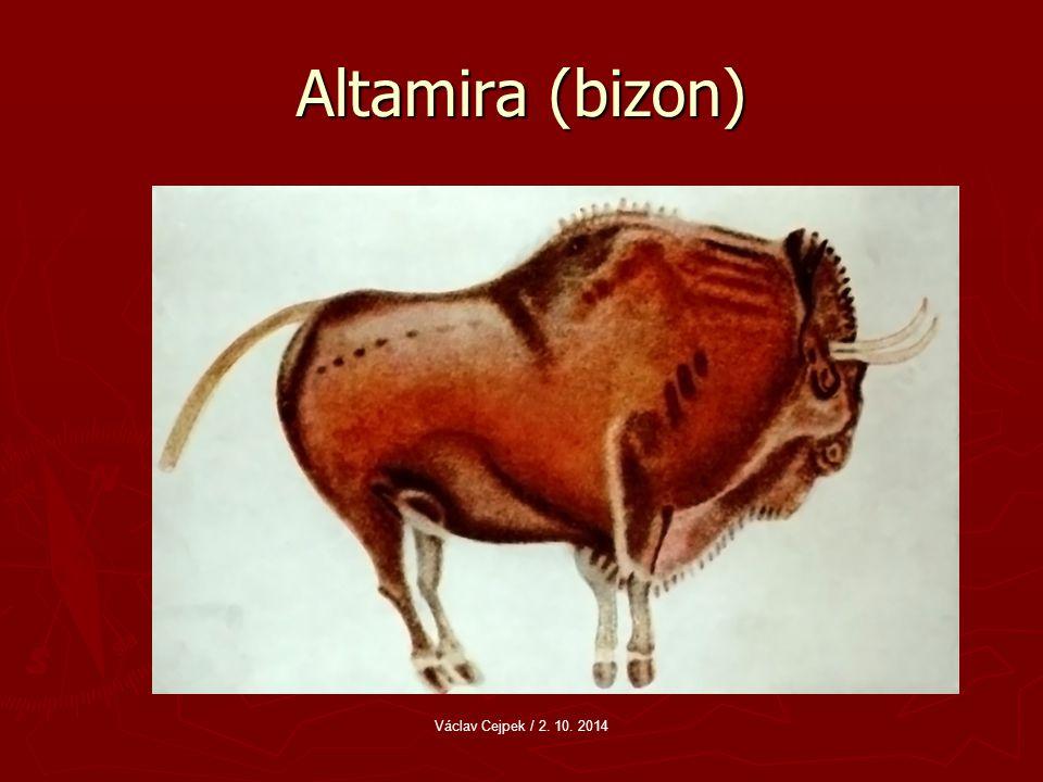 Altamira (bizon) Václav Cejpek / 2. 10. 2014