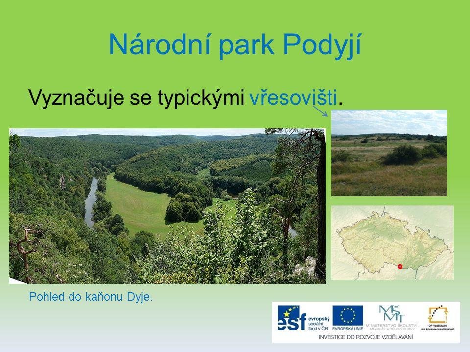 Národní park Podyjí Vyznačuje se typickými vřesovišti. Pohled do kaňonu Dyje.