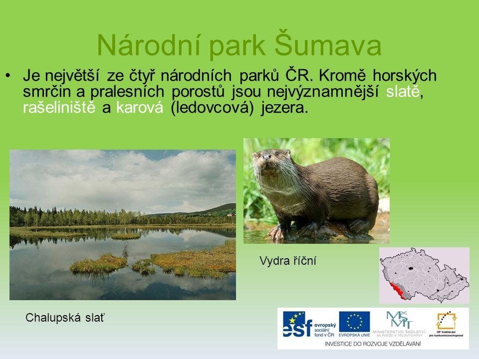 Národní park Šumava Je největší ze čtyř národních parků ČR.