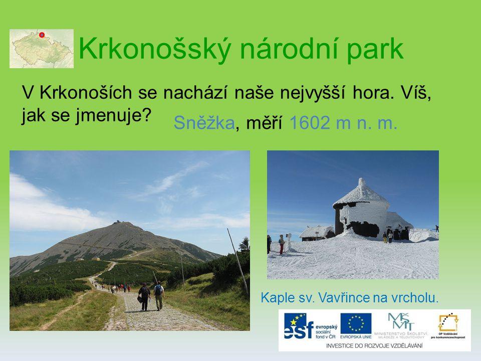 Krkonošský národní park V Krkonoších se nachází naše nejvyšší hora.
