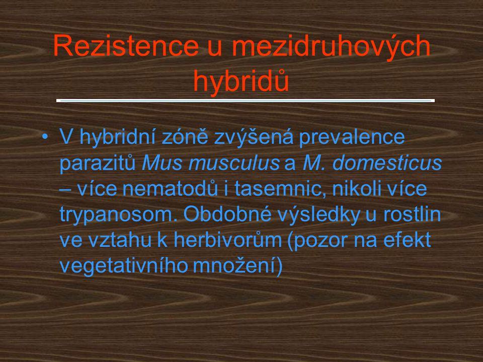 Rezistence u mezidruhových hybridů V hybridní zóně zvýšená prevalence parazitů Mus musculus a M. domesticus – více nematodů i tasemnic, nikoli více tr