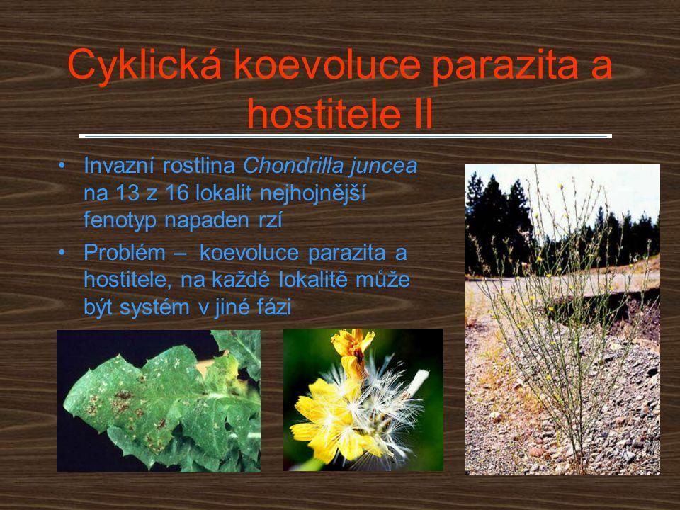 Cyklická koevoluce parazita a hostitele II Invazní rostlina Chondrilla juncea na 13 z 16 lokalit nejhojnější fenotyp napaden rzí Problém – koevoluce p