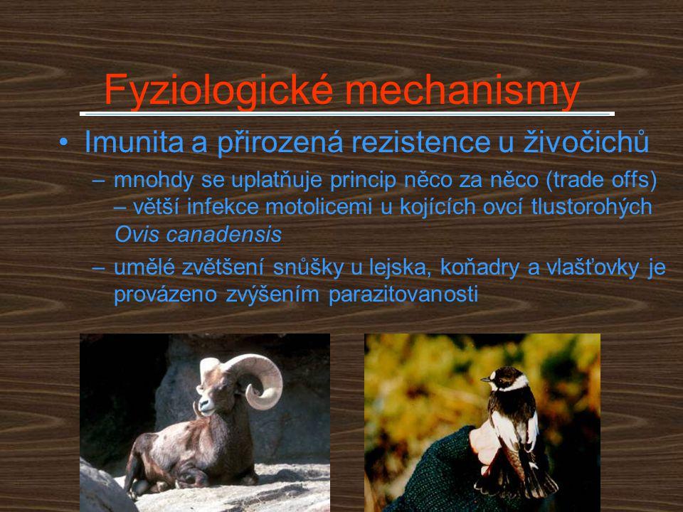 Životní cyklus Edhazardia aedis