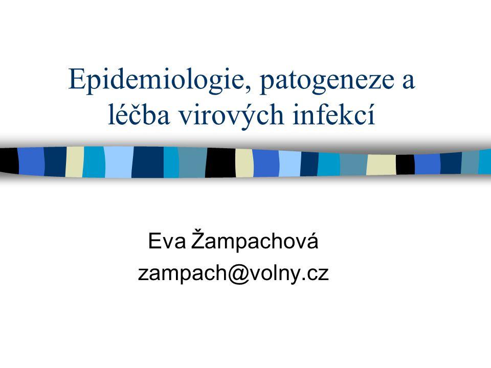 Jiné možnosti léčby virových infekcí n Imunomodulační preparáty –chemické imunomodulátory (isoprinosin, levamisol) –Interferony n Hyperimunní imunoglobuliny –účinné jen ve virémické fázi infekce n Terapeutické vakcíny –zatím jen ve stádiu vývoje