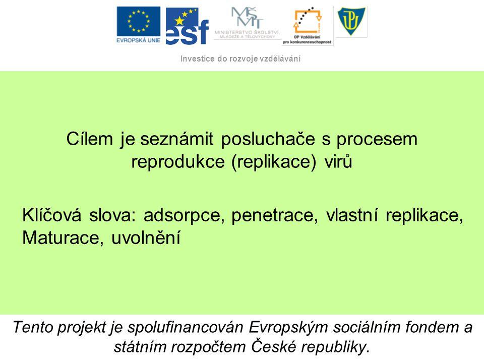 Tento projekt je spolufinancován Evropským sociálním fondem a státním rozpočtem České republiky. Investice do rozvoje vzdělávání Tento projekt je spol