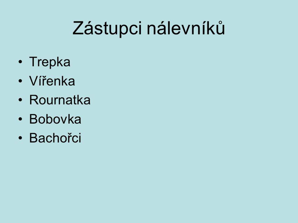 Zástupci nálevníků Trepka Vířenka Rournatka Bobovka Bachořci