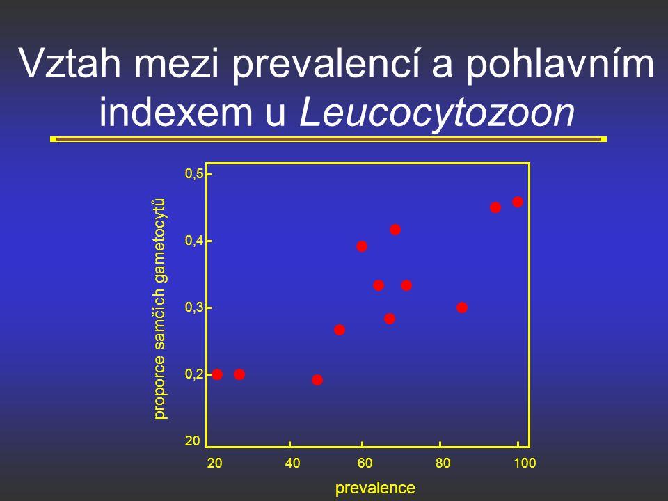 Vztah mezi prevalencí a pohlavním indexem u Leucocytozoon 20406080100 20 0,2 0,3 0,4 0,5 proporce samčích gametocytů prevalence