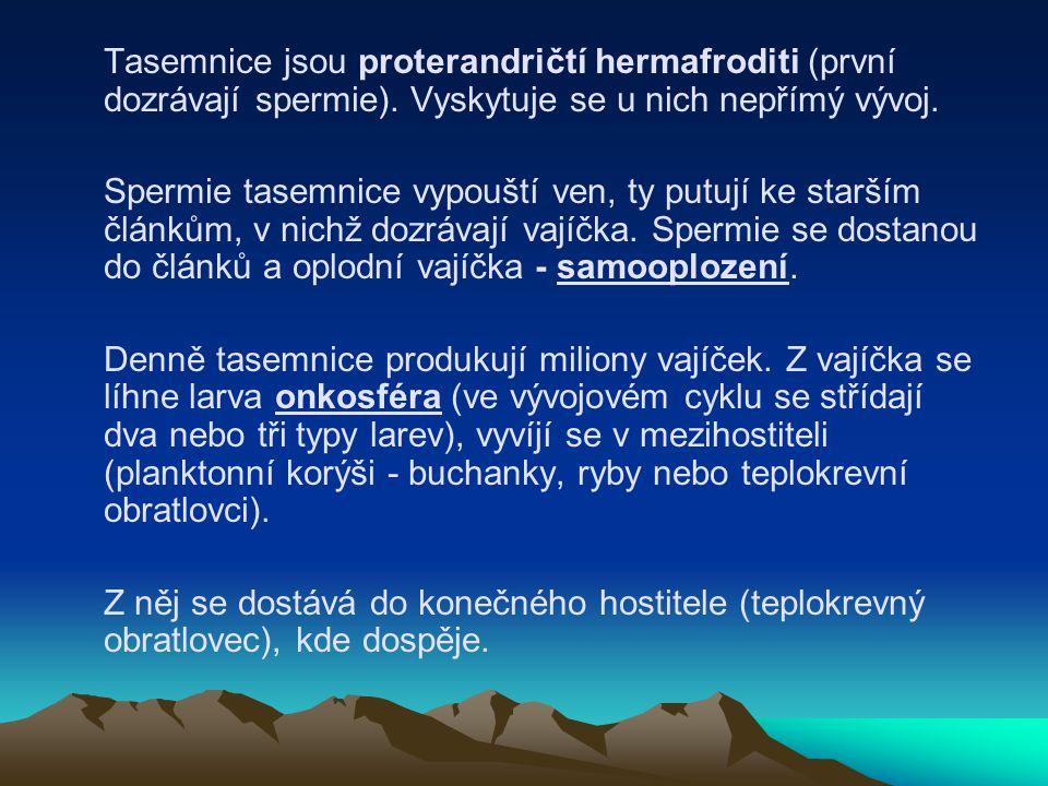 Tasemnice jsou proterandričtí hermafroditi (první dozrávají spermie). Vyskytuje se u nich nepřímý vývoj. Spermie tasemnice vypouští ven, ty putují ke