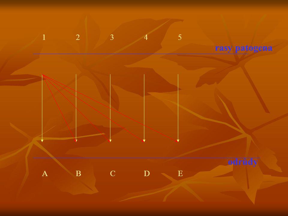 rasy patogena odrůdy 12345 ABCDE