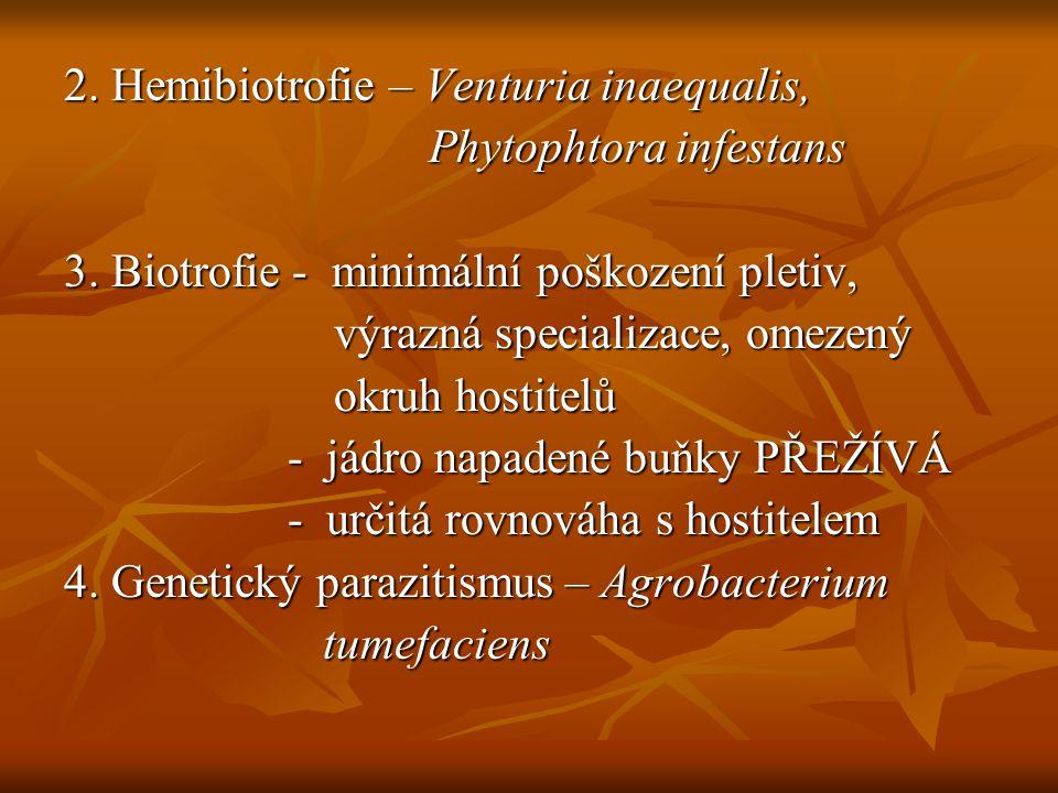 Infekční cyklus - interakce hostitele a patogena - interakce hostitele a patogena + určité podmínky prostředí + určité podmínky prostředí CHOROBA CHOROBA - opakuje se - opakuje se - životní cyklus x infekční cyklus - životní cyklus x infekční cyklus
