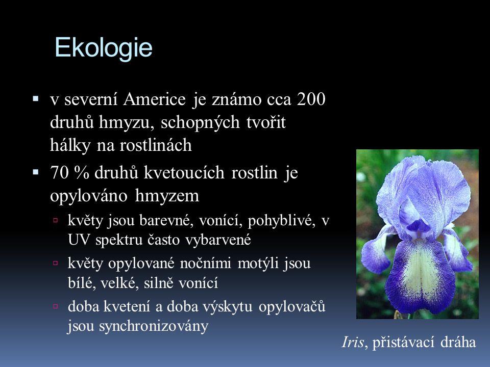 Ekologie  v severní Americe je známo cca 200 druhů hmyzu, schopných tvořit hálky na rostlinách  70 % druhů kvetoucích rostlin je opylováno hmyzem 