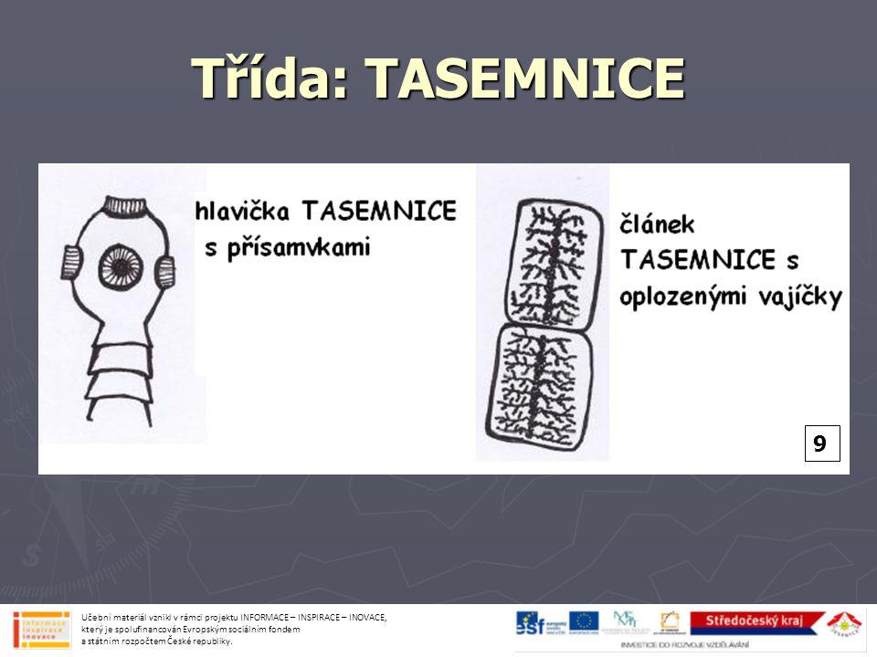 Třída: TASEMNICE Učební materiál vznikl v rámci projektu INFORMACE – INSPIRACE – INOVACE, který je spolufinancován Evropským sociálním fondem a státní