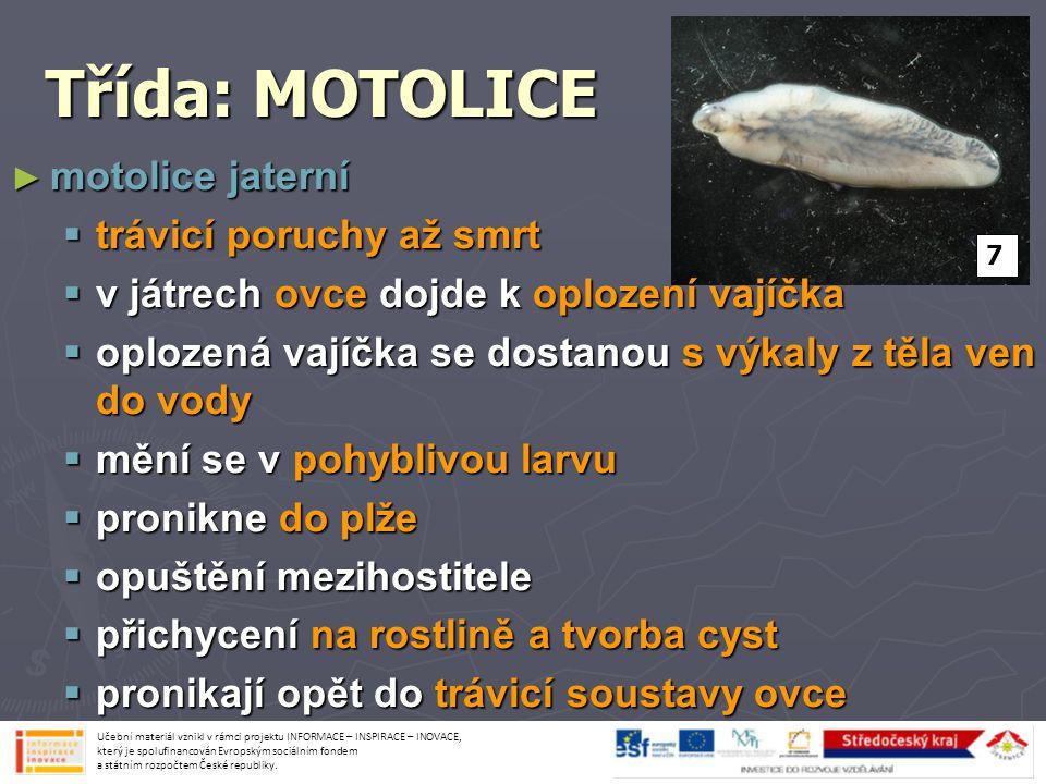 Vývojový cyklus MOTOLICE 8 Učební materiál vznikl v rámci projektu INFORMACE – INSPIRACE – INOVACE, který je spolufinancován Evropským sociálním fondem a státním rozpočtem České republiky.