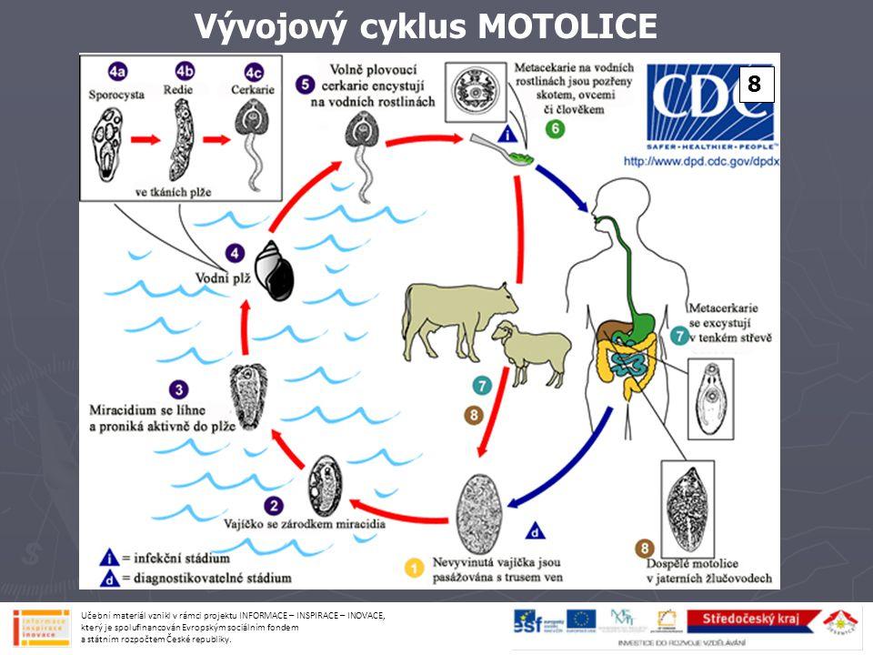 Vývojový cyklus MOTOLICE 8 Učební materiál vznikl v rámci projektu INFORMACE – INSPIRACE – INOVACE, který je spolufinancován Evropským sociálním fonde