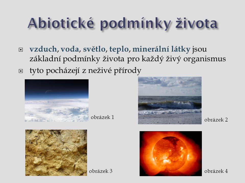 Abiotické podmínky života  vzduch, voda, světlo, teplo, minerální látky
