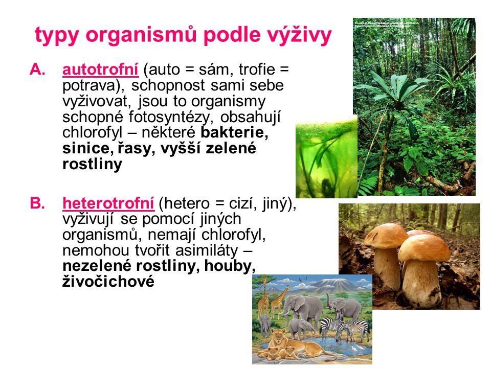 typy organismů podle výživy A.autotrofní (auto = sám, trofie = potrava), schopnost sami sebe vyživovat, jsou to organismy schopné fotosyntézy, obsahuj