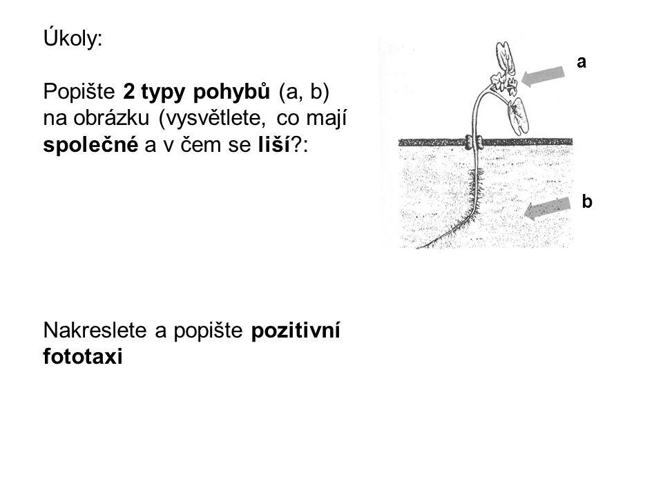 Úkoly: Popište 2 typy pohybů (a, b) na obrázku (vysvětlete, co mají společné a v čem se liší?: Nakreslete a popište pozitivní fototaxi a b