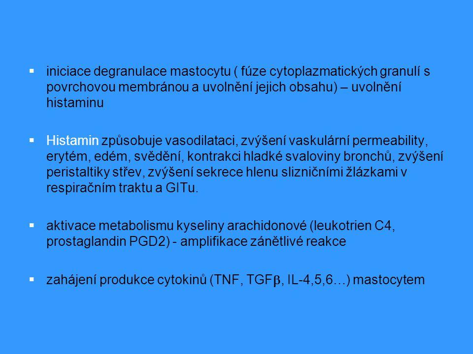  iniciace degranulace mastocytu ( fúze cytoplazmatických granulí s povrchovou membránou a uvolnění jejich obsahu) – uvolnění histaminu  Histamin způ