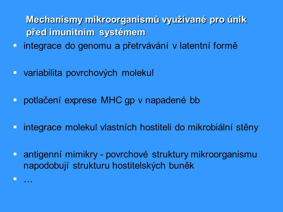 Vlastnosti očkovací látky  bezpečnost  bezpečnost – nesmí vyvolávat onemocnění nebo poškozovat organismus  specificita  specificita – musí vyvolávat tvorbu protilátek proti danému antigenu  prezentovatelnost antigenu  prezentovatelnost antigenu ( v komplexu s MHC gp.)  účinnost  účinnost – očkovací látka musí vyvolat dostatečně silnou imunitní reakci