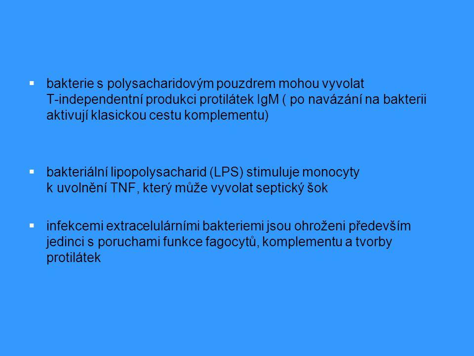 Obrana proti intracelulárním bakteriím a plísním  mykobakterie, některé kvasinky a plísně  intracelulární parazitismus je dán schopností mikroorganismů uniknout mikrobicidním mechanismům fagocytů  makrofágy, které je pohltily produkují IL-12 → diferenciace T H 1, které produkují IFN  a membránový TNF→ aktivace makrofágů a indukce iNOS