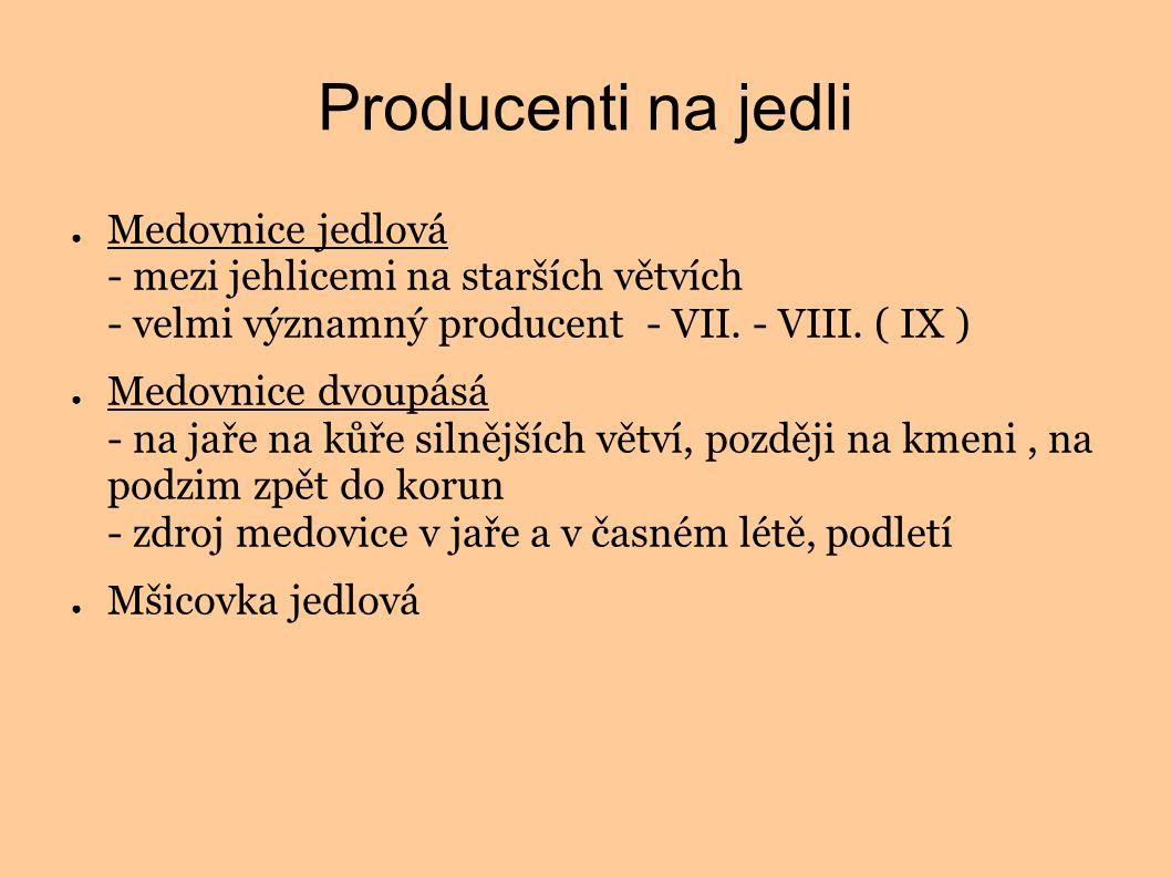 Producenti na jedli ● Medovnice jedlová - mezi jehlicemi na starších větvích - velmi významný producent - VII. - VIII. ( IX ) ● Medovnice dvoupásá - n