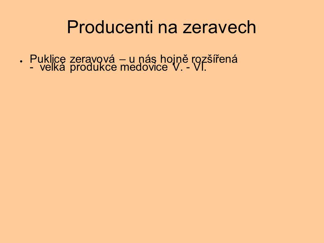 Producenti na zeravech ● Puklice zeravová – u nás hojně rozšířená - velká produkce medovice V. - VI.