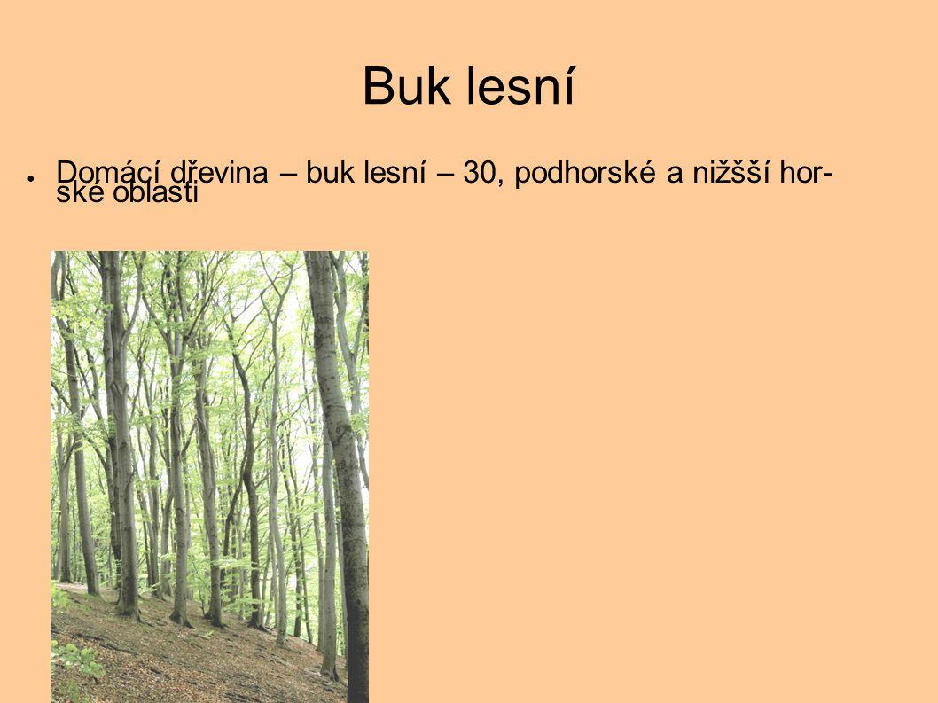 Buk lesní ● Domácí dřevina – buk lesní – 30, podhorské a nižšší hor- ské oblasti