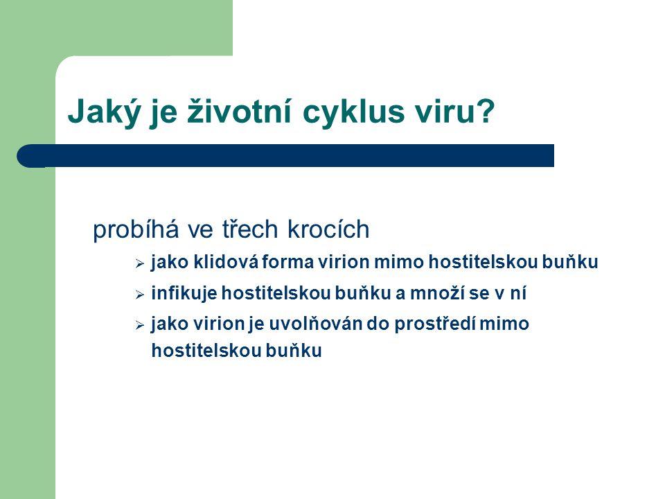 Jaký je životní cyklus viru.
