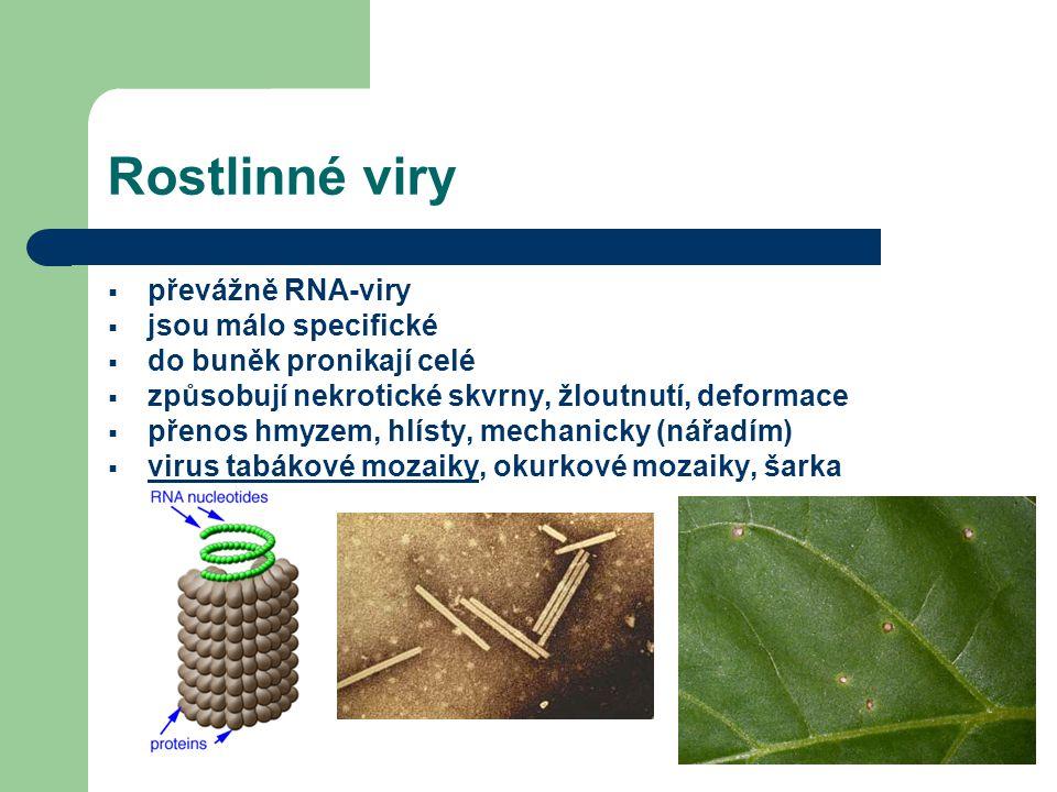 Rostlinné viry  převážně RNA-viry  jsou málo specifické  do buněk pronikají celé  způsobují nekrotické skvrny, žloutnutí, deformace  přenos hmyzem, hlísty, mechanicky (nářadím)  virus tabákové mozaiky, okurkové mozaiky, šarka