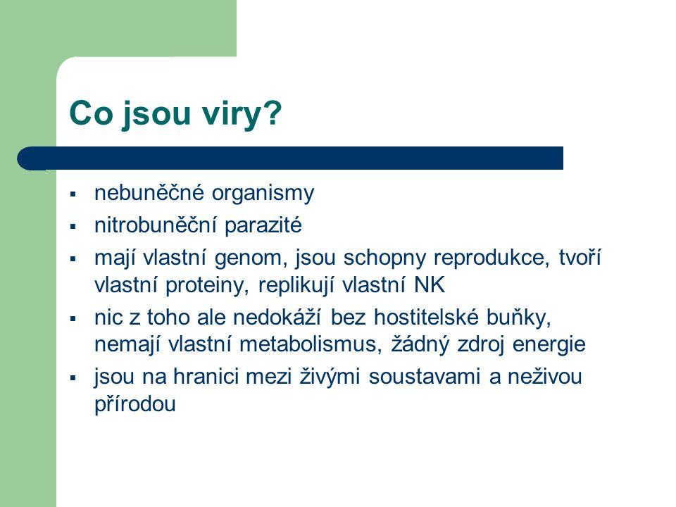 Co jsou viry.