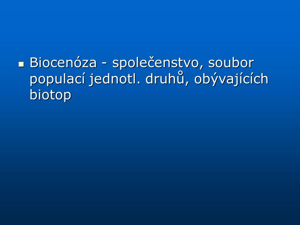 Biocenóza - společenstvo, soubor populací jednotl. druhů, obývajících biotop Biocenóza - společenstvo, soubor populací jednotl. druhů, obývajících bio
