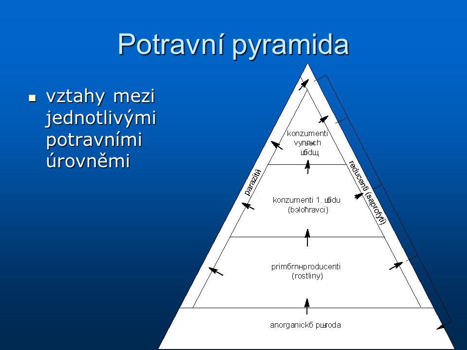 Potravní pyramida vztahy mezi jednotlivými potravními úrovněmi vztahy mezi jednotlivými potravními úrovněmi