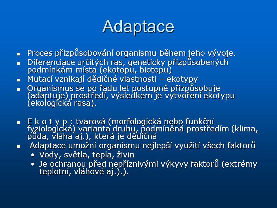 Adaptace Proces přizpůsobování organismu během jeho vývoje. Proces přizpůsobování organismu během jeho vývoje. Diferenciace určitých ras, geneticky př