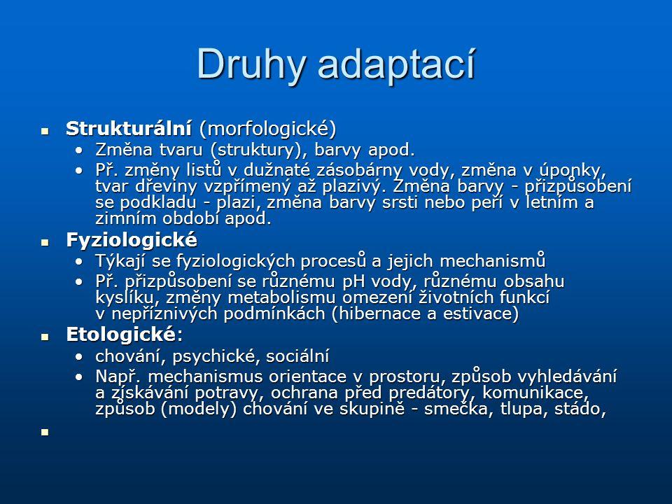 Druhy adaptací Strukturální (morfologické) Strukturální (morfologické) Změna tvaru (struktury), barvy apod.Změna tvaru (struktury), barvy apod. Př. zm