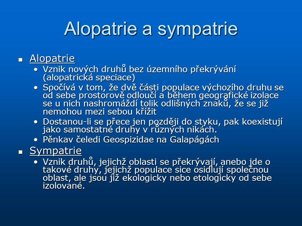 Alopatrie a sympatrie Alopatrie Alopatrie Vznik nových druhů bez územního překrývání (alopatrická speciace)Vznik nových druhů bez územního překrývání