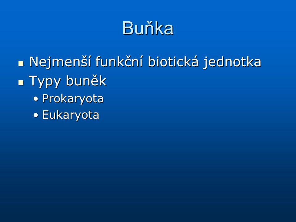 Buňka Nejmenší funkční biotická jednotka Nejmenší funkční biotická jednotka Typy buněk Typy buněk ProkaryotaProkaryota EukaryotaEukaryota