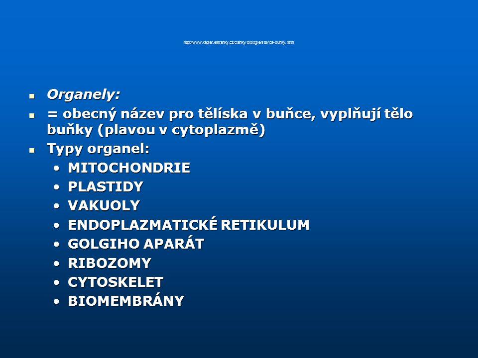http://www.kepler.estranky.cz/clanky/biologie/stavba-bunky.html Organely: Organely: = obecný název pro tělíska v buňce, vyplňují tělo buňky (plavou v