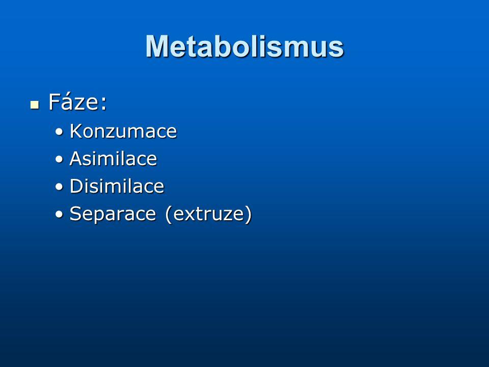 Metabolismus Fáze: Fáze: KonzumaceKonzumace AsimilaceAsimilace DisimilaceDisimilace Separace (extruze)Separace (extruze)